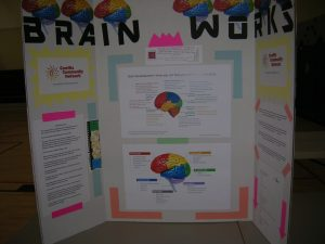 Brain Development - Help your Child Learn and Grow