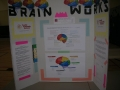 Town Hall Meeting Brain Works Display1